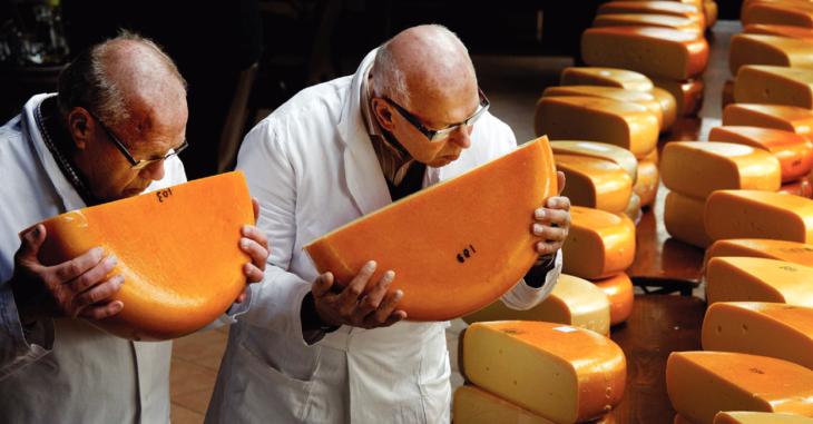 Batalla queso 1