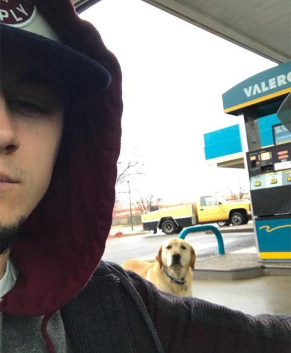 selfie perro labrador atras