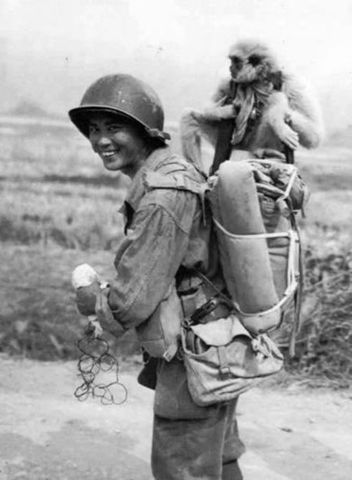 Fotos increibles II Guerra