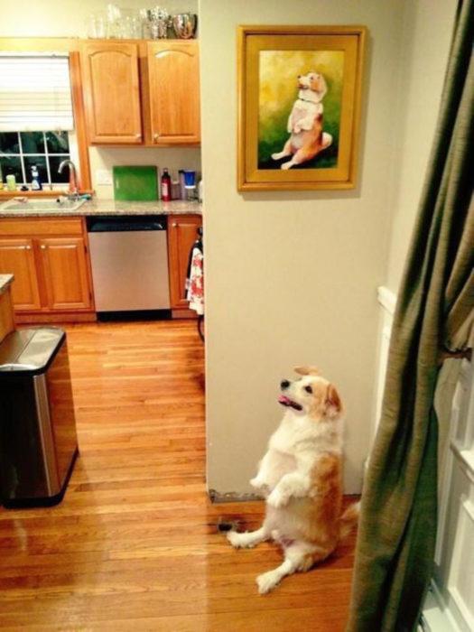 cuadro de perro y perro en la misma posición