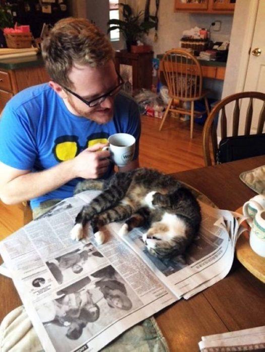 gato acostado en el periodico que su dueño queria leer