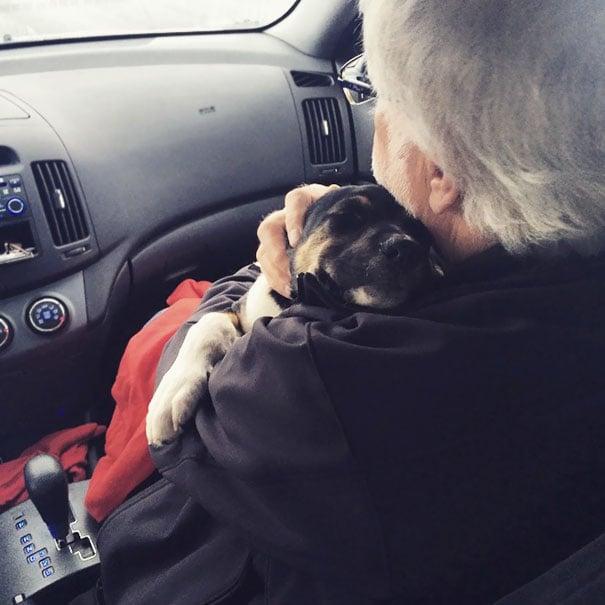 papa en el carro abrazando al perro