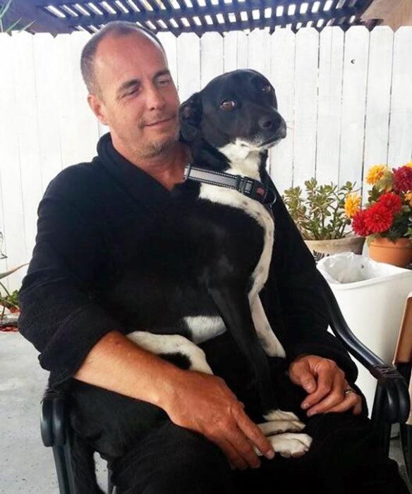 perro en el brazo del papa