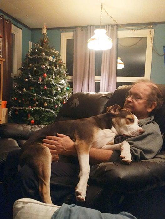 papa acostado en el sofá con el perro encima