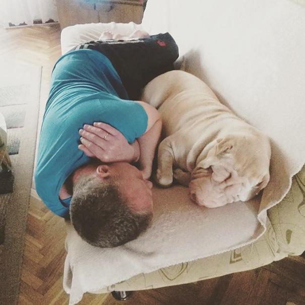 papa durmiendo en el sofa con el perro