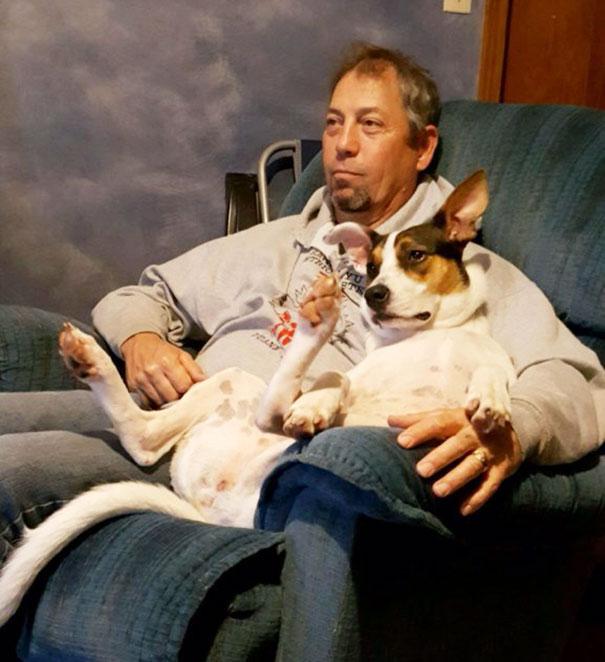 perro y papa viendo teles juntos