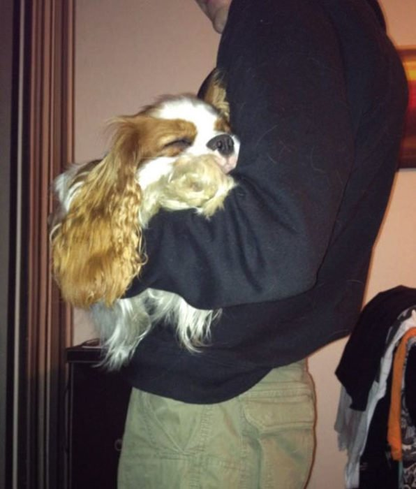 perro dormido en brazos de papa