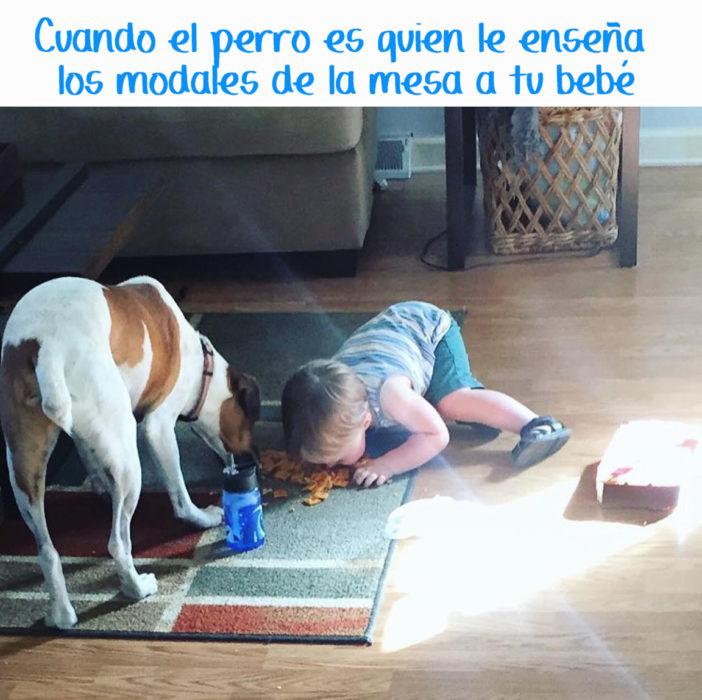 niño comiendo del suelo con un perro al lado