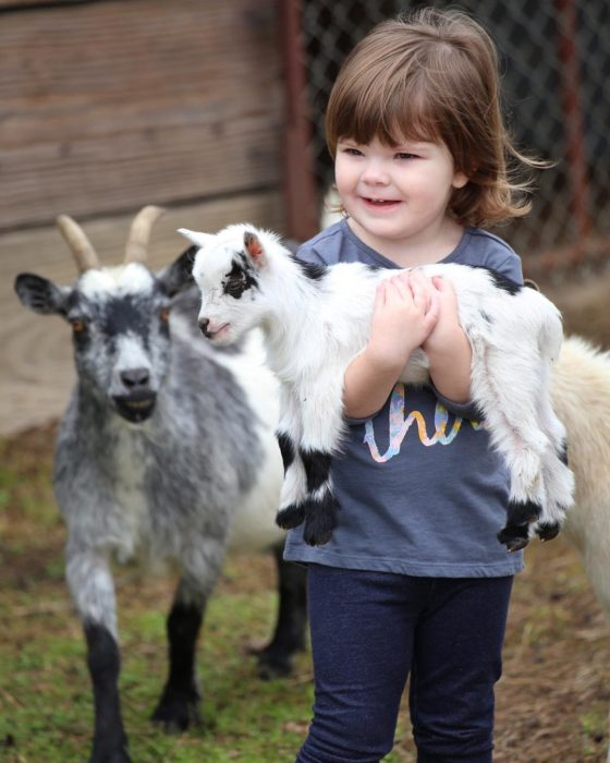 bebé cargando una cabra