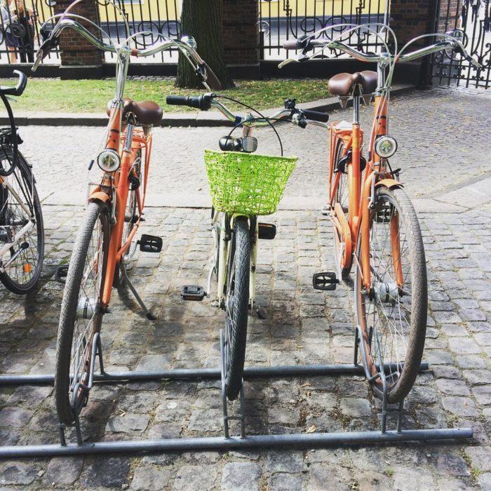 bici de niños en medio de bicis de adultos