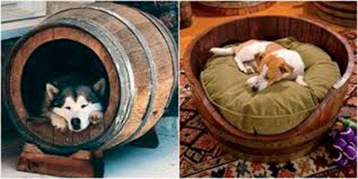 cama para perros hechas en un barril