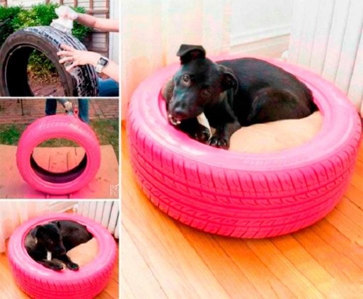 cama para perros en una llanta