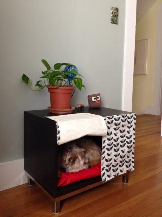 cama para perros hecha con un mueble sin usar