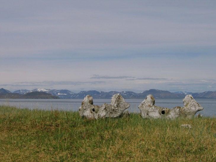 cementerio de ballenas en siberia