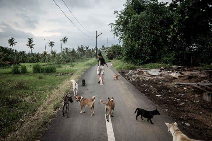 niña que cuida perros callejeros