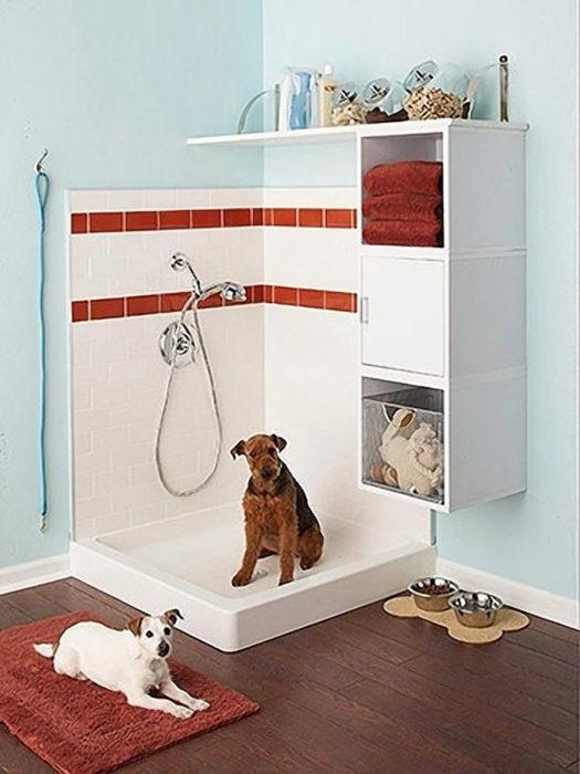 cuarto de baño para perro
