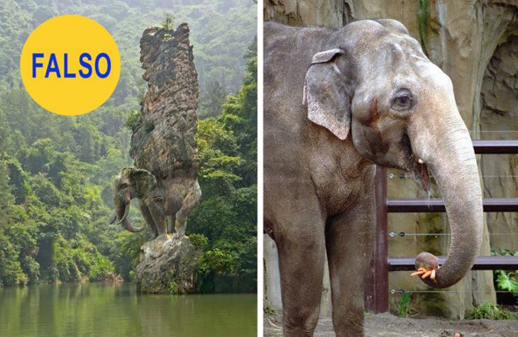 escultura de un elefante sosteniendo una columna