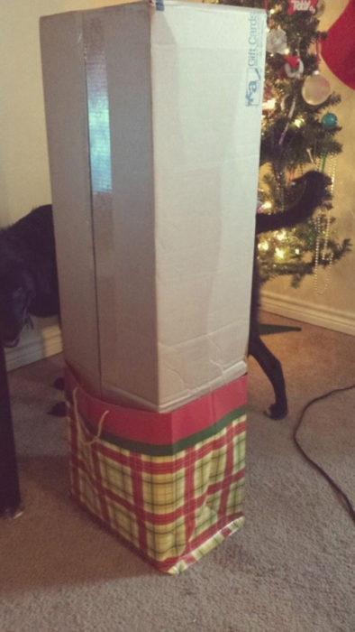 caja enorme dentro de pequeña bolsa de regalos