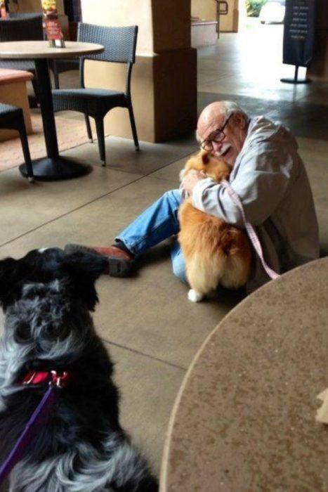 un corgi alegrando a un abuelito
