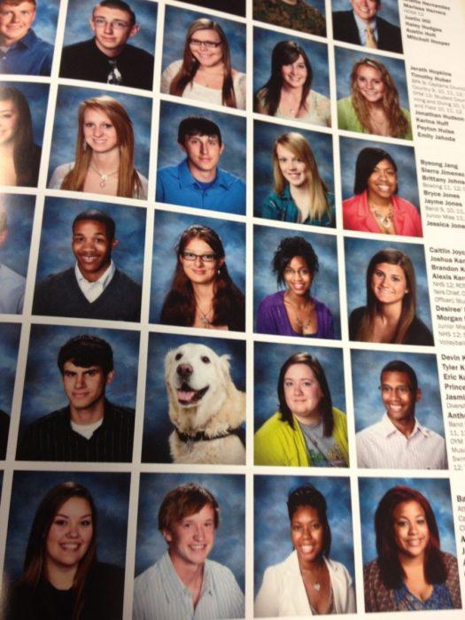 la foto del anuario de un perro