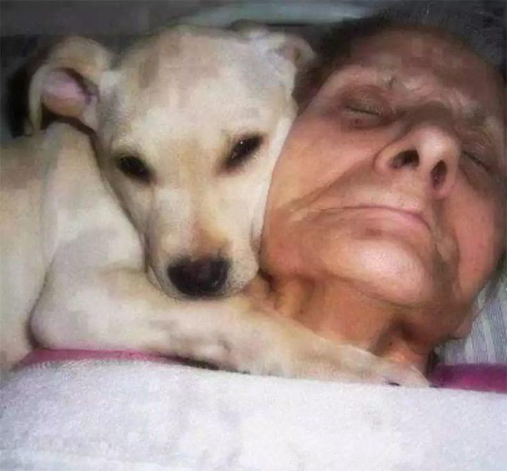 francisca romero y su perro