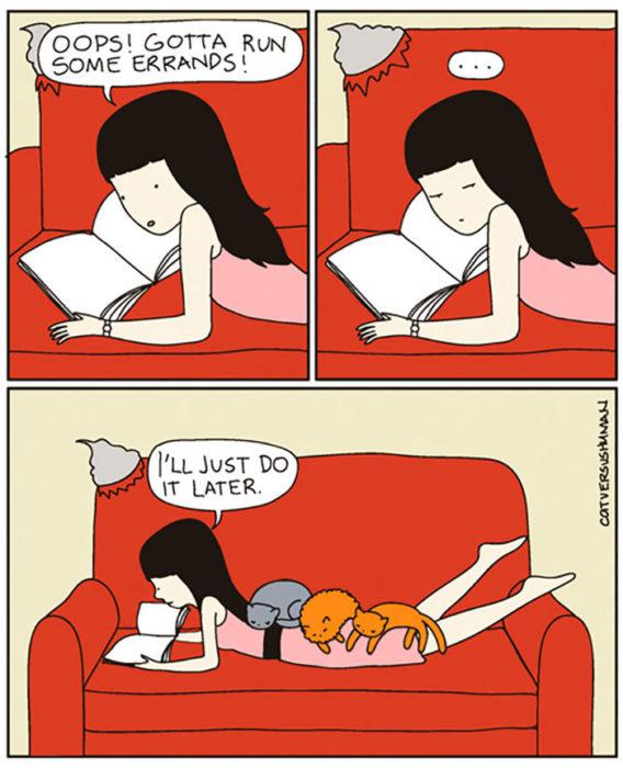 la vida real con gatos 11