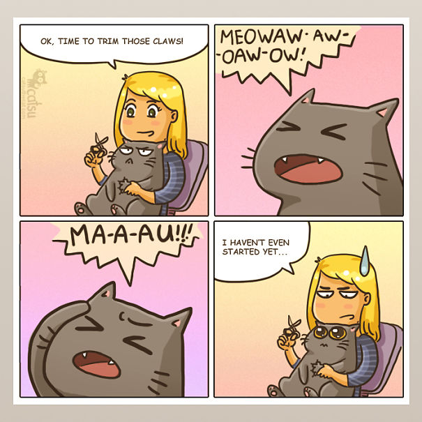 la vida real con gatos 13