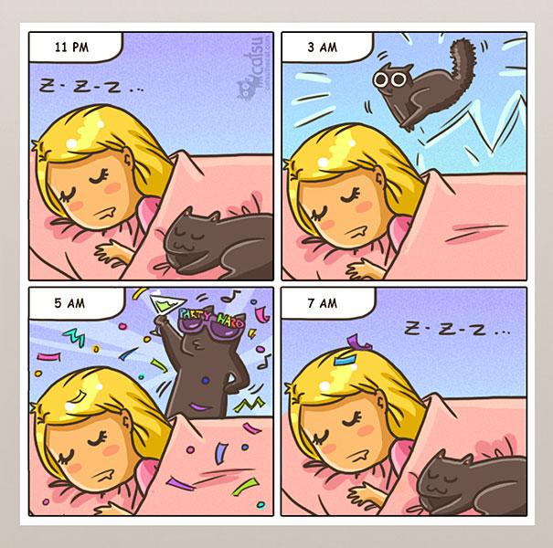 la vida real con gatos 14