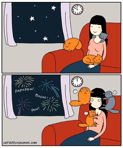 la vida real con gatos 18