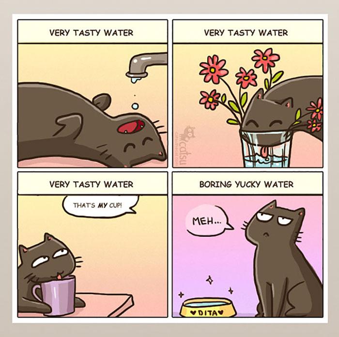 la vida real con gatos 4