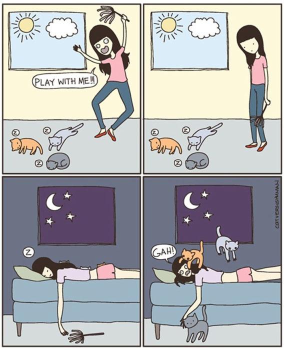 la vida real con gatos 5