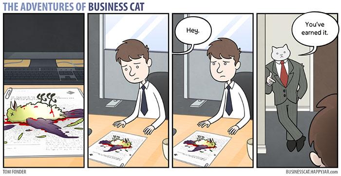 la vida real con gatos 6