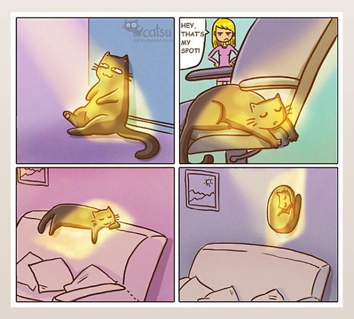 la vida real con gatos 9