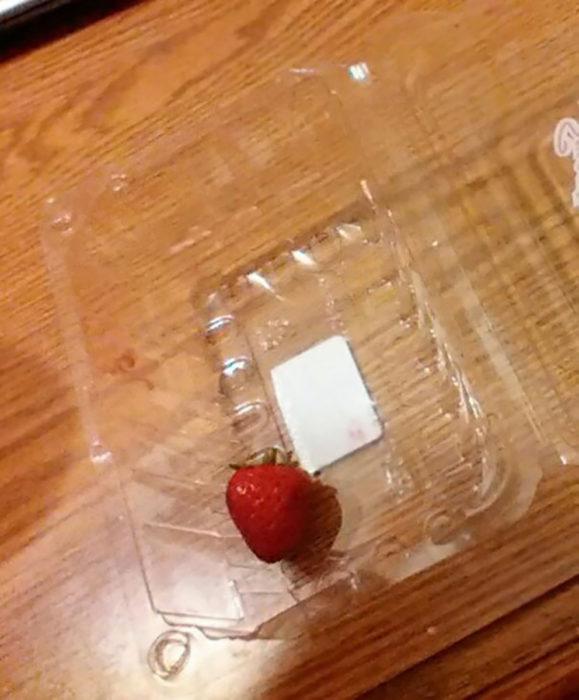 una fresa en una caja de plástico