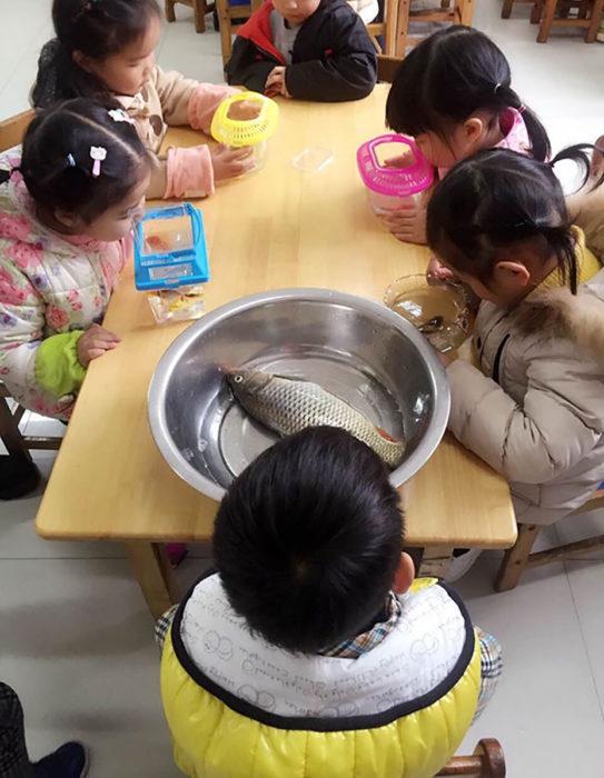 niños de preescolar con peces, uno tiene un pescado