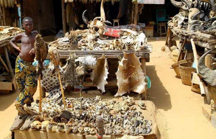 mercado de akodessewa