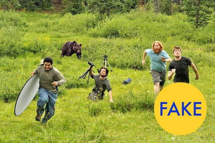 fotógrafos huyen de oso