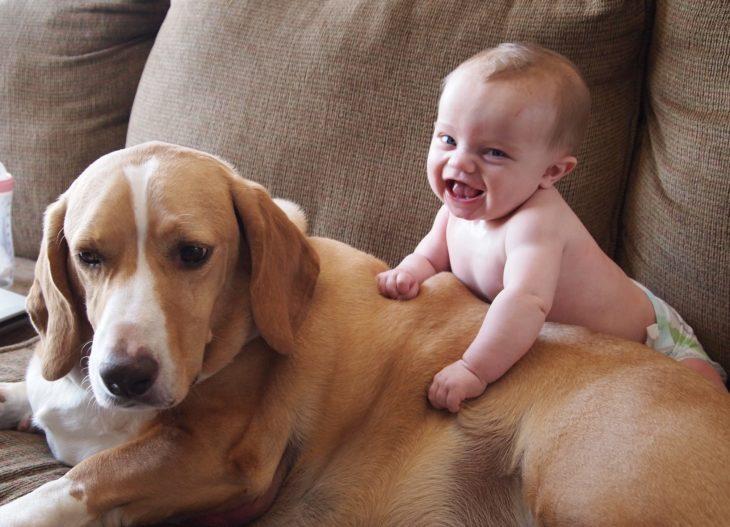 niño expresando lo feliz que es junto a su perro