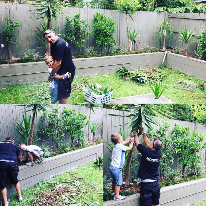 niño planta árboles con su papá