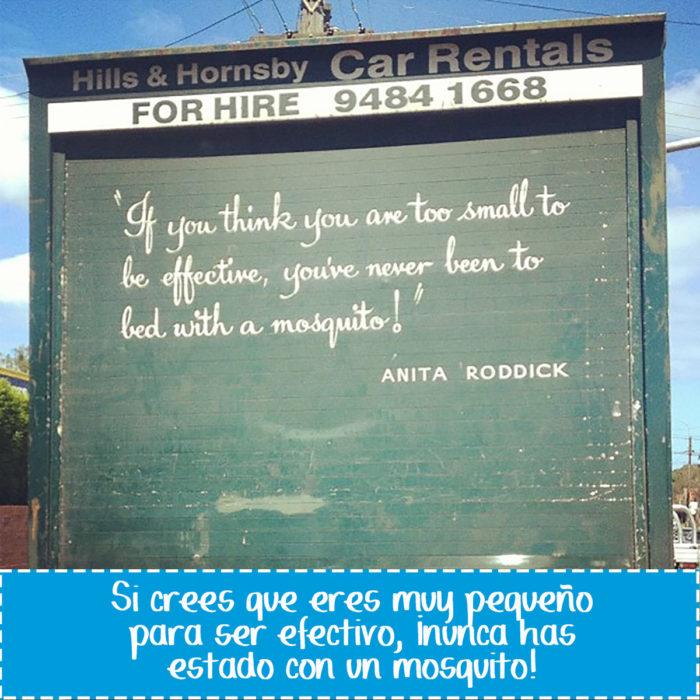 cartel gracioso en vehículo sobre mosquitos