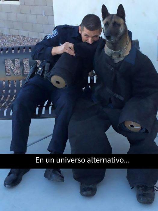 un oficial mordiendo a un perro policía