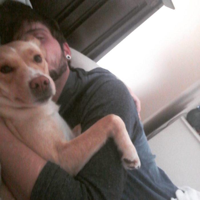 perro abrazando a un humano