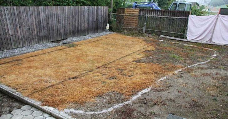 patio trasero seco y sin vida