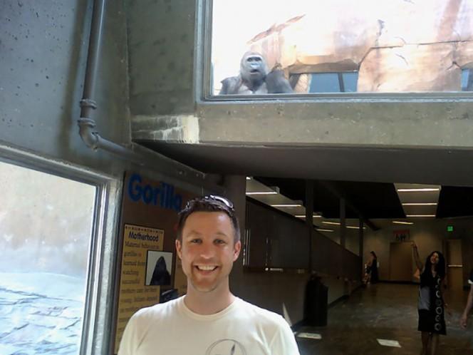 persona foto y atrás un gorila