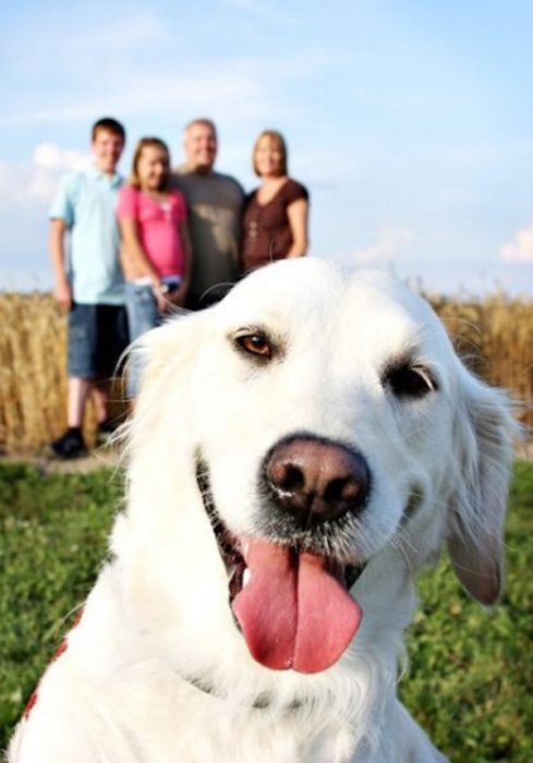 foto de familia y perro adelante