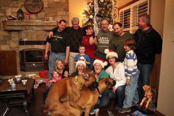 foto familiar se meten los perros montados