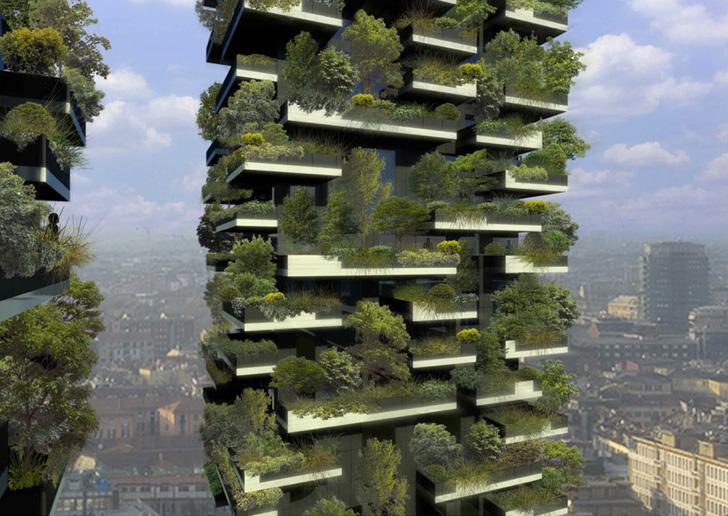edificio alto y en los balcones plantas y árboles