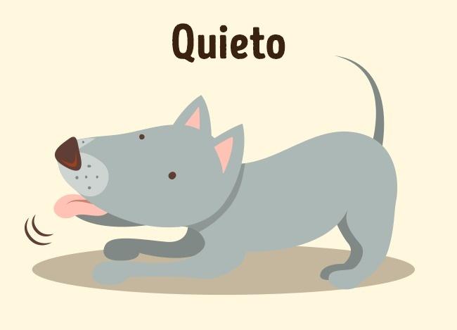 quieto perrito truco