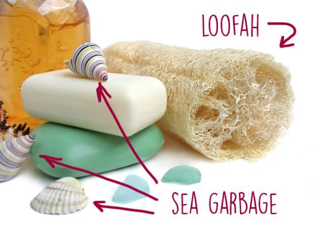 de dónde viene el estropajo canasta mar