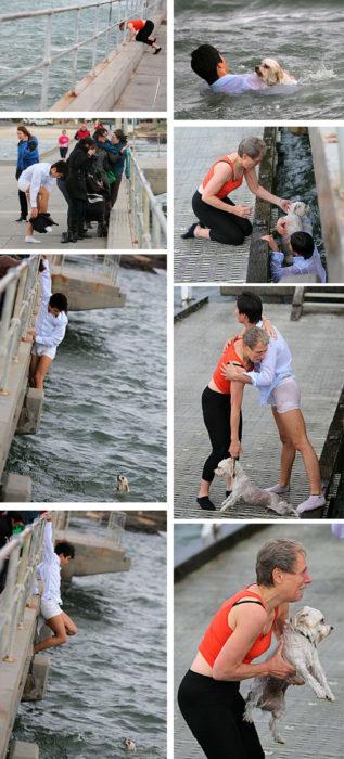 hombre se avienta al agua para salvar perro